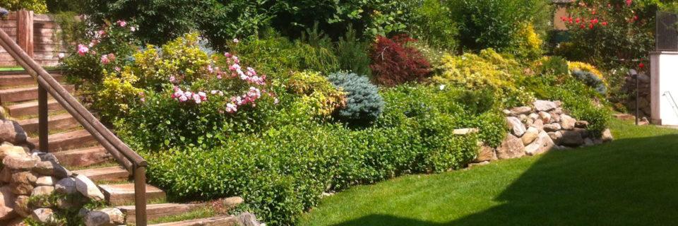 Trasformiamo i tuoi spazi verdi in un angolo di paradiso